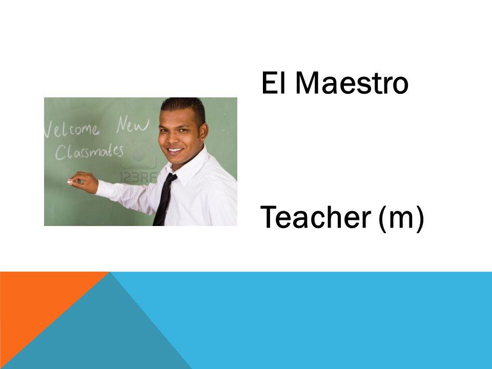 El Maestro Teacher (m)