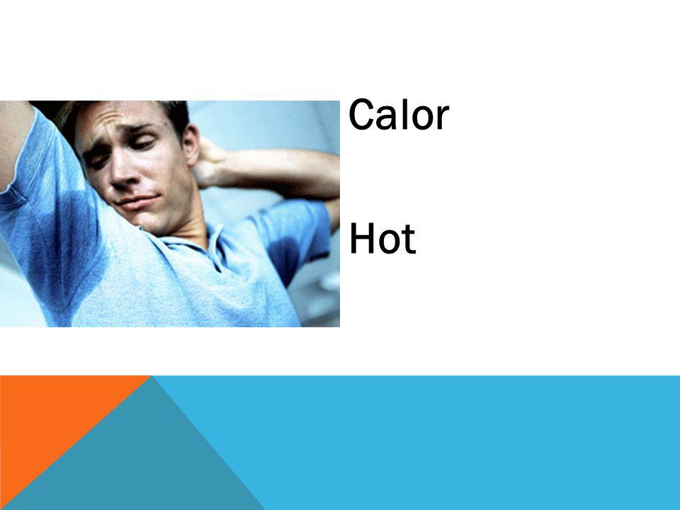 Calor Hot