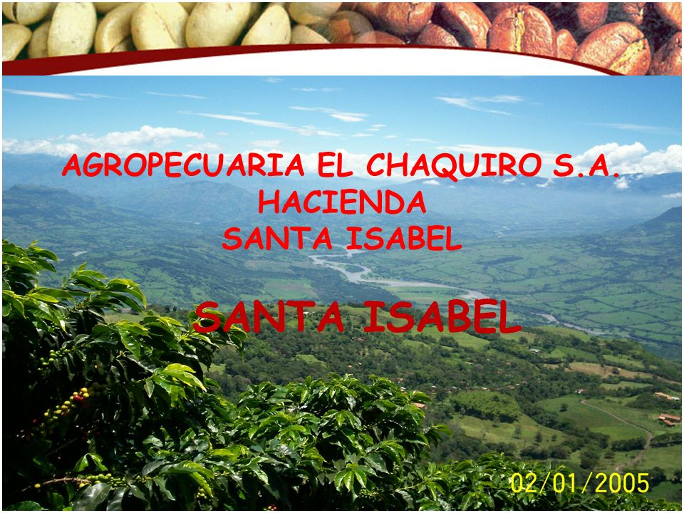 Fecha: Junio de 2008 © Copyright FNC (año) AGROPECUARIA EL CHAQUIRO S.A. HACIENDA SANTA ISABEL