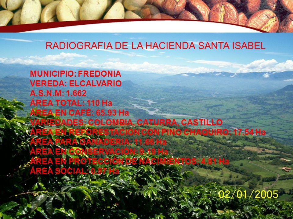 Fecha: Junio de 2008 © Copyright FNC (año) RADIOGRAFIA DE LA HACIENDA SANTA ISABEL MUNICIPIO: FREDONIA VEREDA: ELCALVARIO A.S.N.M: 1.662 ÁREA TOTAL: 1