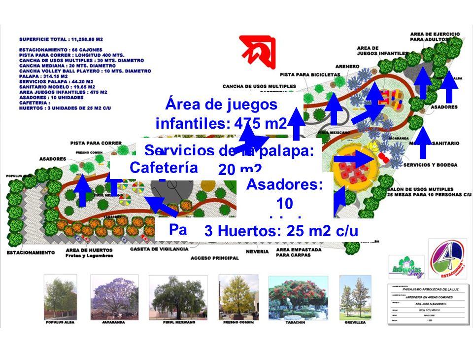 Palapa: 314.15 m2 Servicios de la palapa: 44.20 m2 Área de juegos infantiles: 475 m2 Asadores: 10 unidades Cafetería 3 Huertos: 25 m2 c/u