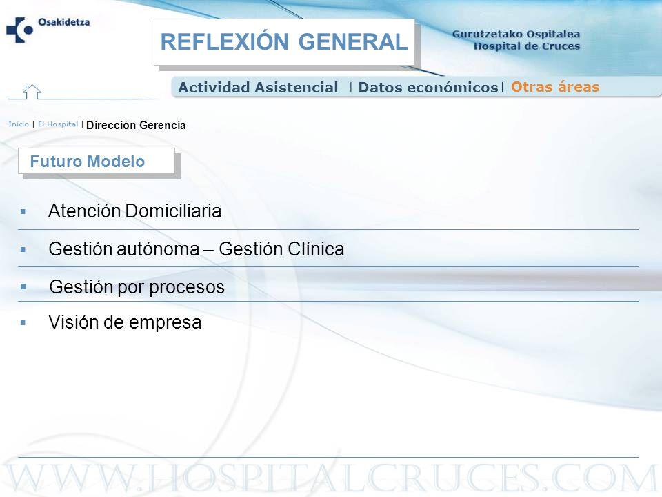 Dirección Gerencia Atención Domiciliaria Futuro Modelo Gestión autónoma – Gestión Clínica Gestión por procesos Visión de empresa Actividad Asistencial