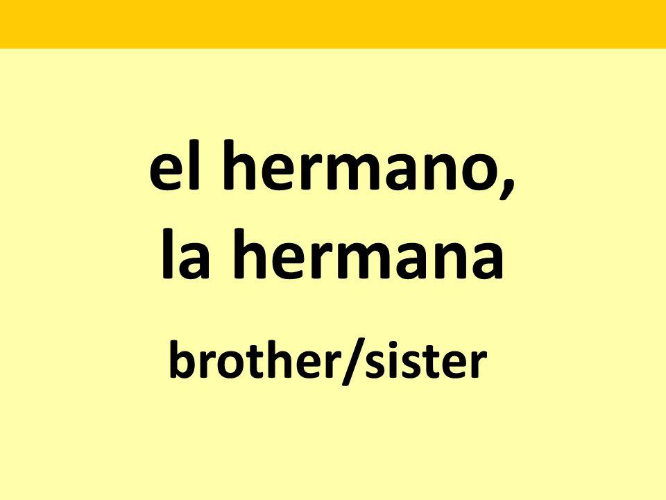 el hermano, la hermana brother/sister