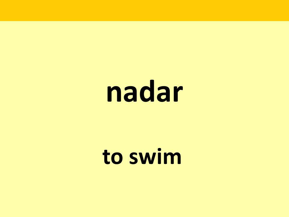 nadar to swim