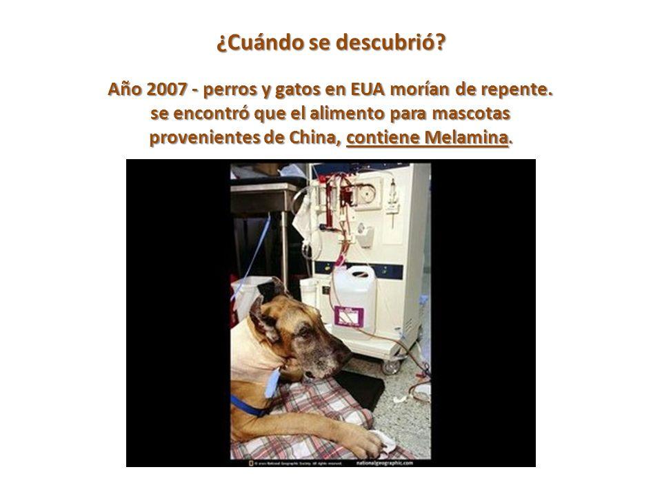 ¿Cuándo se descubrió.Año 2007 - perros y gatos en EUA morían de repente.