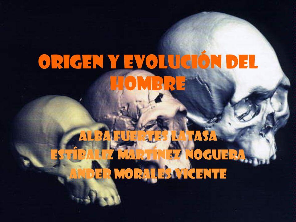 ORIGEN Y EVOLUCIÓN DEL HOMBRE ALBA FUERTES LATASA ESTÍBALIZ MARTÍNEZ NOGUERA ANDER MORALES VICENTE