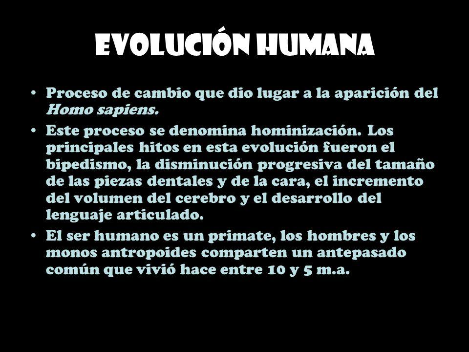 Evolución humana Proceso de cambio que dio lugar a la aparición del Homo sapiens. Este proceso se denomina hominización. Los principales hitos en esta