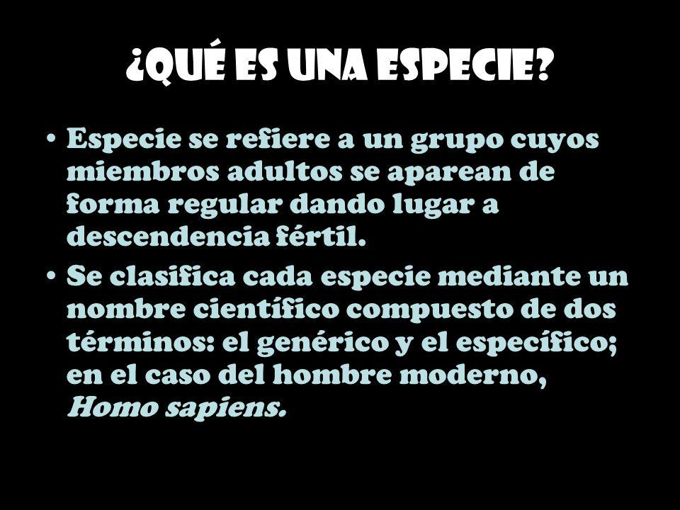 ¿Qué es una especie? Especie se refiere a un grupo cuyos miembros adultos se aparean de forma regular dando lugar a descendencia fértil. Se clasifica