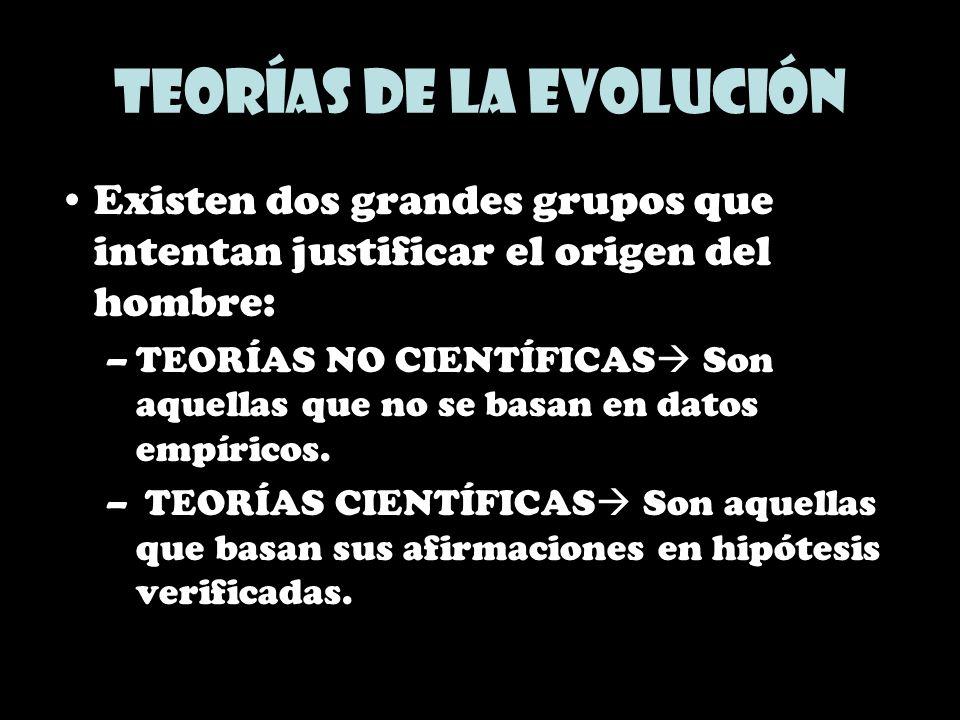 Teorías de la evolución Existen dos grandes grupos que intentan justificar el origen del hombre: –TEORÍAS NO CIENTÍFICAS Son aquellas que no se basan