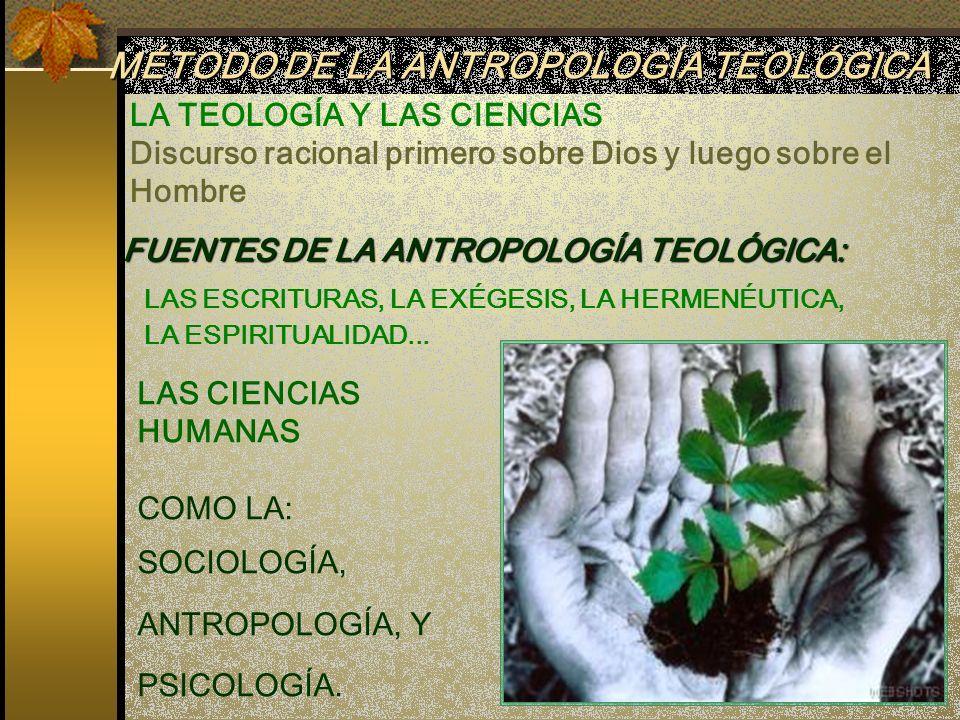 LA TEOLOGÍA Y LAS CIENCIAS Discurso racional primero sobre Dios y luego sobre el Hombre LAS ESCRITURAS, LA EXÉGESIS, LA HERMENÉUTICA, LA ESPIRITUALIDA