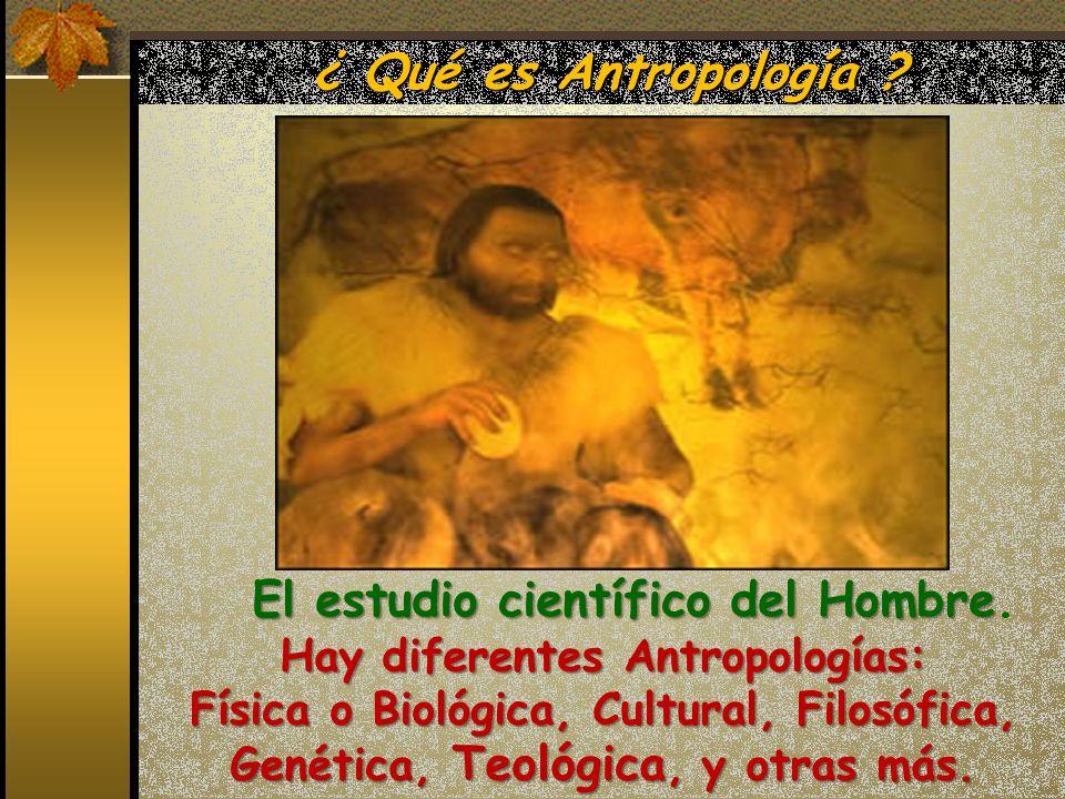 ¿ Qué es Antropología ? Hay diferentes Antropologías: Física o Biológica, Cultural, Filosófica, Genética, Teológica, y otras más. El estudio científic
