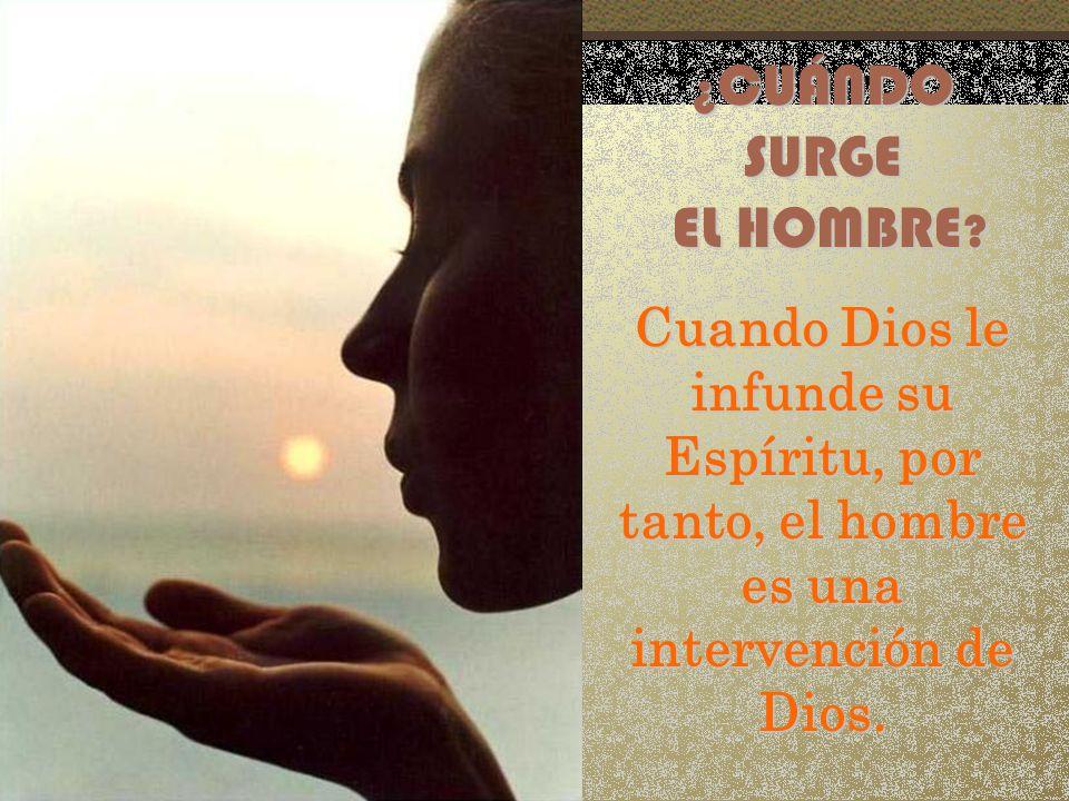 ¿ CUÁNDO SURGE EL HOMBRE ? EL HOMBRE ? Cuando Dios le infunde su Espíritu, por tanto, el hombre es una intervención de Dios.