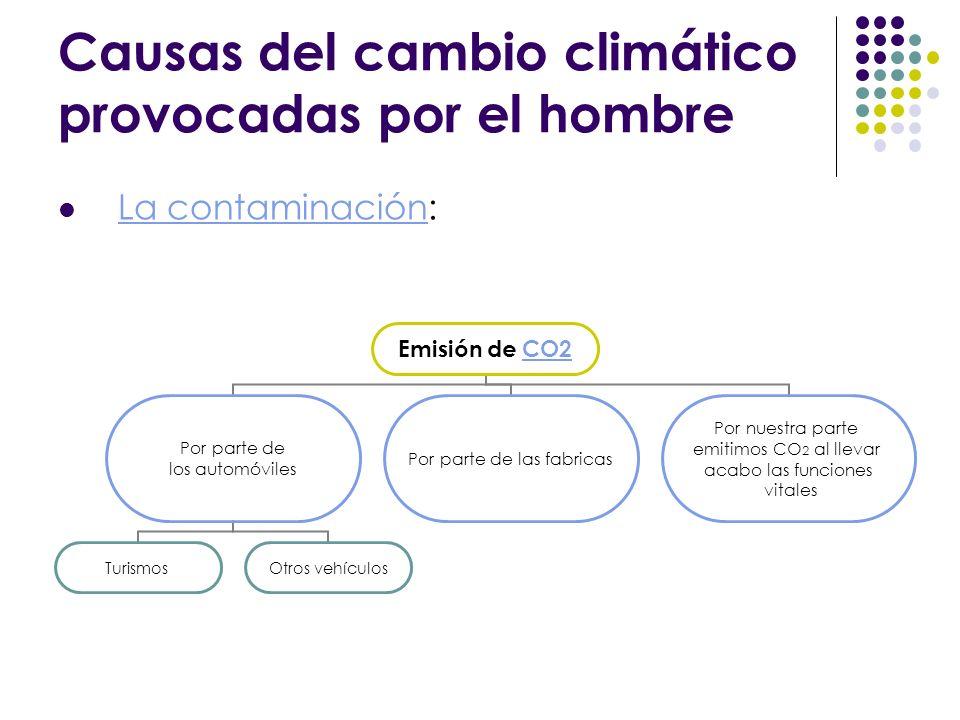 Causas del cambio climático provocadas por el hombre La contaminación: Emisión de CO2 Por parte de los automóviles TurismosOtros vehículos Por parte d