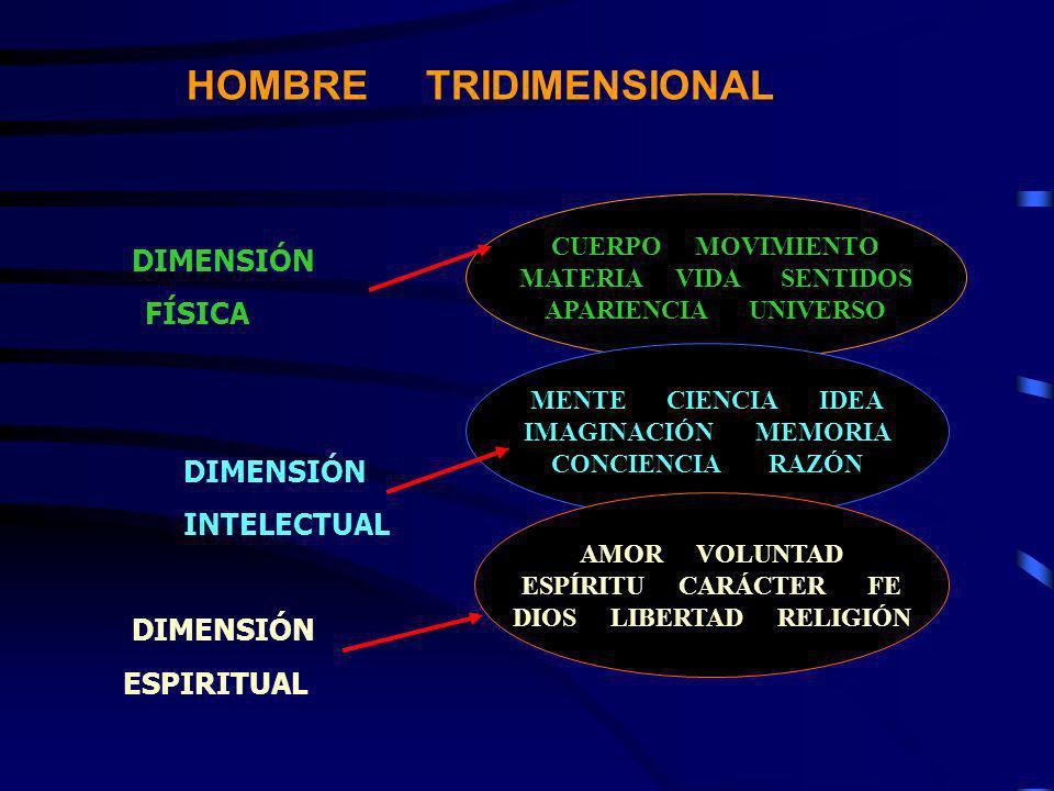 HOMBRE TRIDIMENSIONAL DIMENSIÓN FÍSICA DIMENSIÓN INTELECTUAL DIMENSIÓN ESPIRITUAL CUERPO MOVIMIENTO MATERIA VIDA SENTIDOS APARIENCIA UNIVERSO MENTE CI