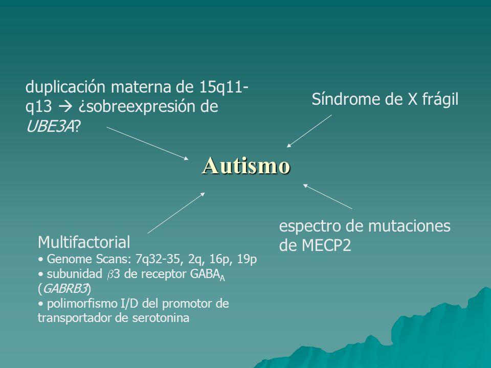 Autismo espectro de mutaciones de MECP2 duplicación materna de 15q11- q13 ¿sobreexpresión de UBE3A.