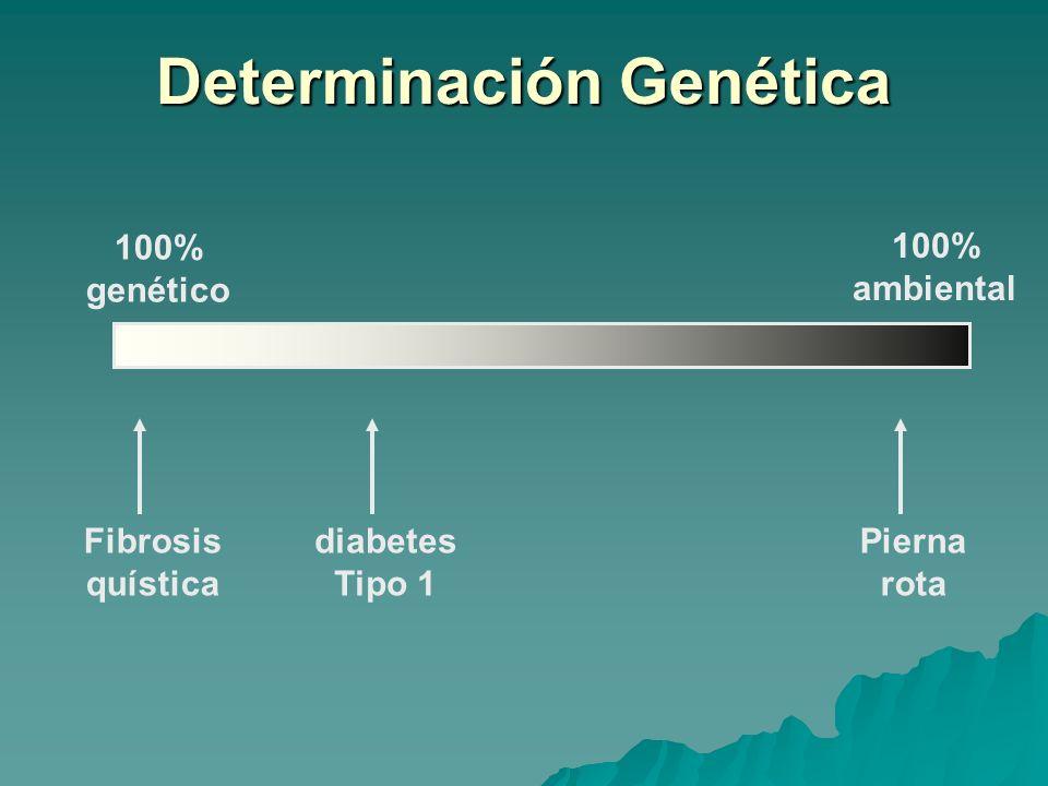Determinación Genética 100% genético 100% ambiental diabetes Tipo 1 Fibrosis quística Pierna rota