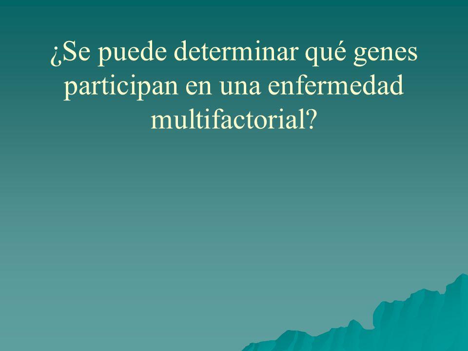 ¿Se puede determinar qué genes participan en una enfermedad multifactorial?