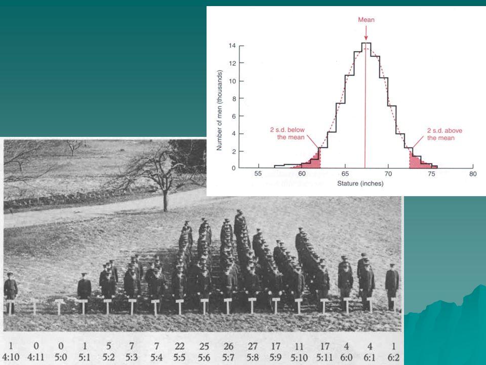 Malformaciones 2 fenotipos diferentes sobre la base de una variación contínua Ejemplos: · Estenosis pilórica.