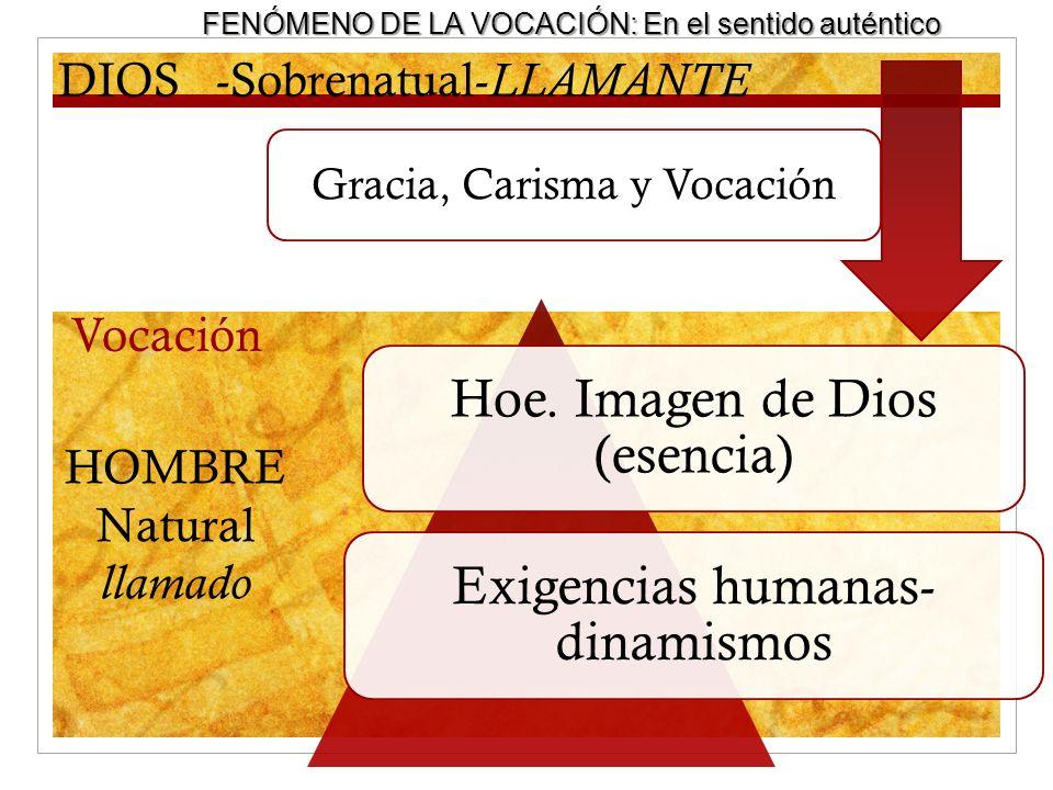 Vocación DIOS-Sobrenatual- LLAMANTE HOMBRE Natural llamado Hoe. Imagen de Dios (esencia) Exigencias humanas- dinamismos Gracia, Carisma y Vocación FEN