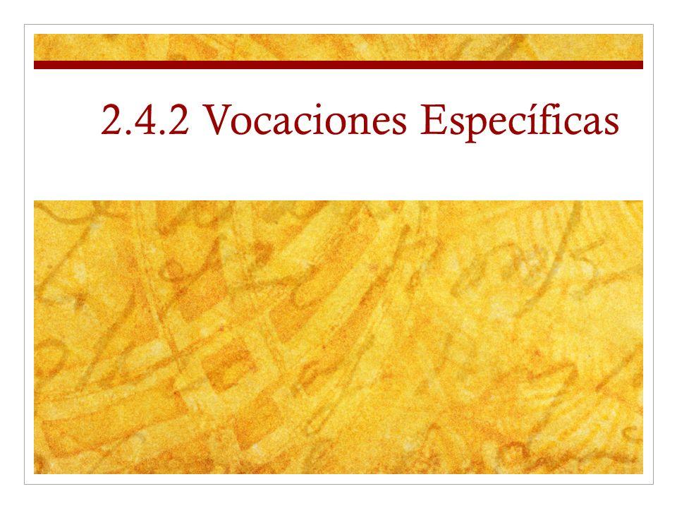 2.4.2 Vocaciones Específicas