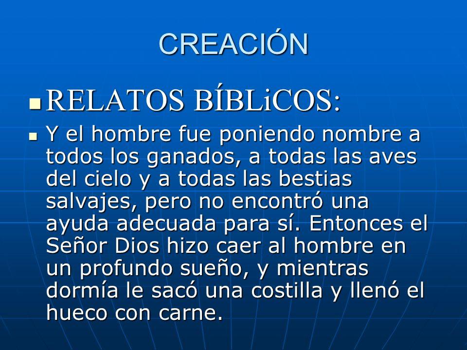 CREACIÓN RELATOS BÍBLiCOS: RELATOS BÍBLiCOS: Y el hombre fue poniendo nombre a todos los ganados, a todas las aves del cielo y a todas las bestias sal