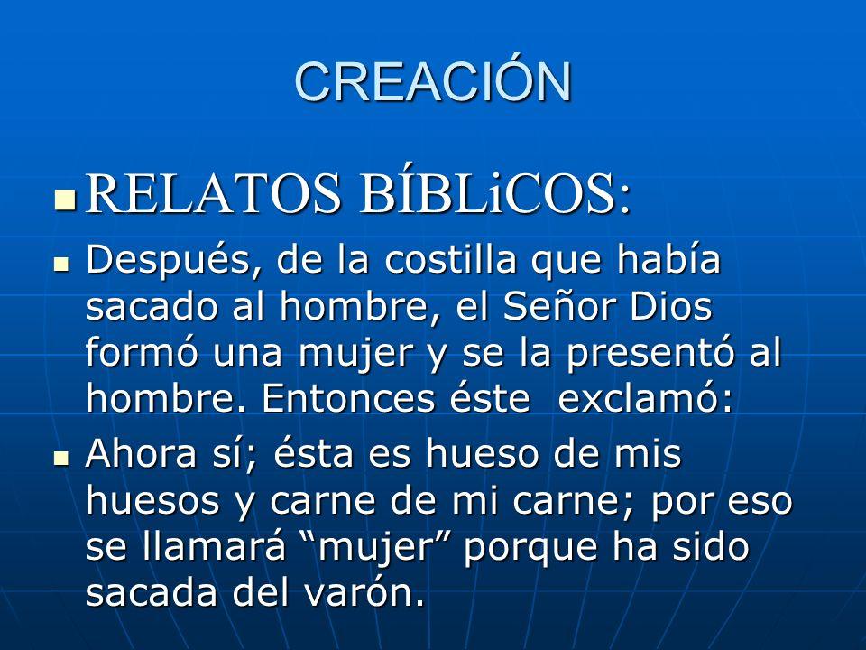 CREACIÓN RELATOS BÍBLiCOS: RELATOS BÍBLiCOS: Después, de la costilla que había sacado al hombre, el Señor Dios formó una mujer y se la presentó al hom