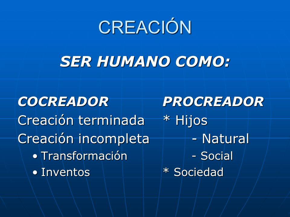 CREACIÓN SER HUMANO COMO: COCREADOR PROCREADOR Creación terminada* Hijos Creación incompleta- Natural Transformación - SocialTransformación - Social I