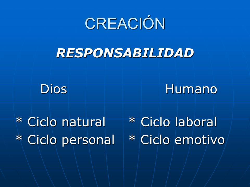CREACIÓN RESPONSABILIDAD Dios Humano * Ciclo natural * Ciclo laboral * Ciclo personal * Ciclo emotivo