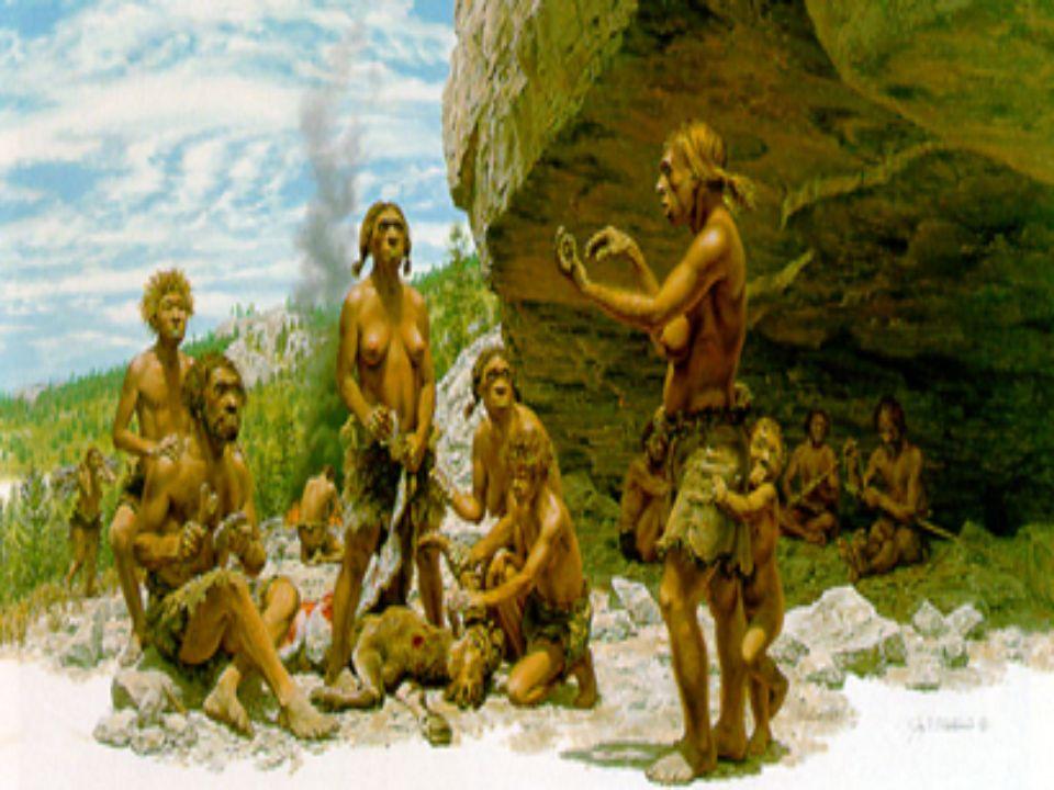Homo sapiens sapiens Después del Neanderthal vino el Homo sapiens sapiens, que es la especie a la cual pertenecemos los seres humanos modernos. Estos