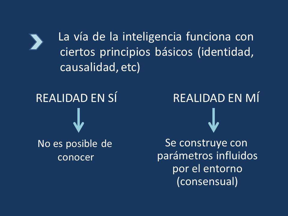 La vía de la inteligencia funciona con ciertos principios básicos (identidad, causalidad, etc) REALIDAD EN SÍREALIDAD EN MÍ No es posible de conocer S