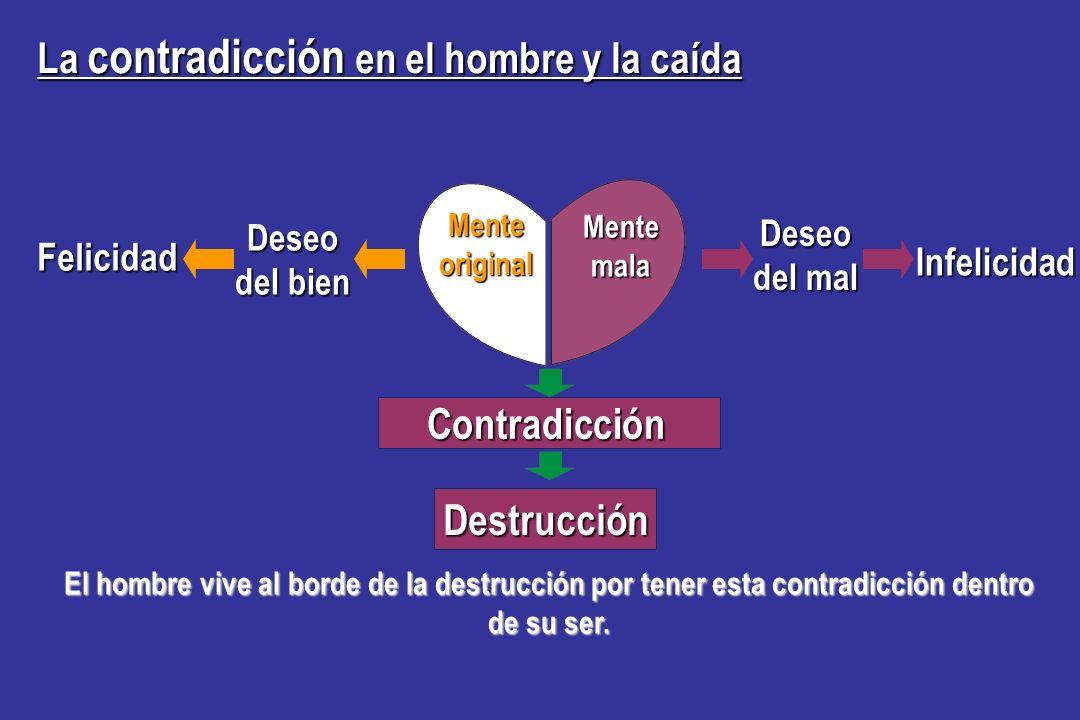 La contradicción en el hombre y la caída Hay una contradicción en el hombre. Dentro del mismo individuo, el poder de la mente original, que desea el b
