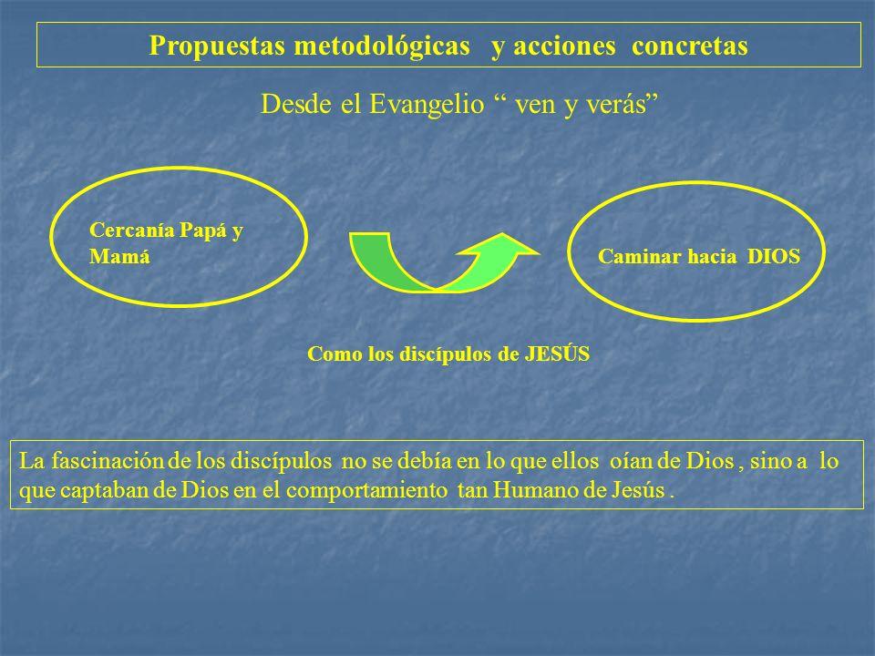 Propuestas metodológicas y acciones concretas Desde el Evangelio ven y verás Cercanía Papá y Mamá Caminar hacia DIOS Como los discípulos de JESÚS La f