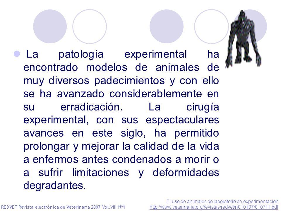 La patología experimental ha encontrado modelos de animales de muy diversos padecimientos y con ello se ha avanzado considerablemente en su erradicaci