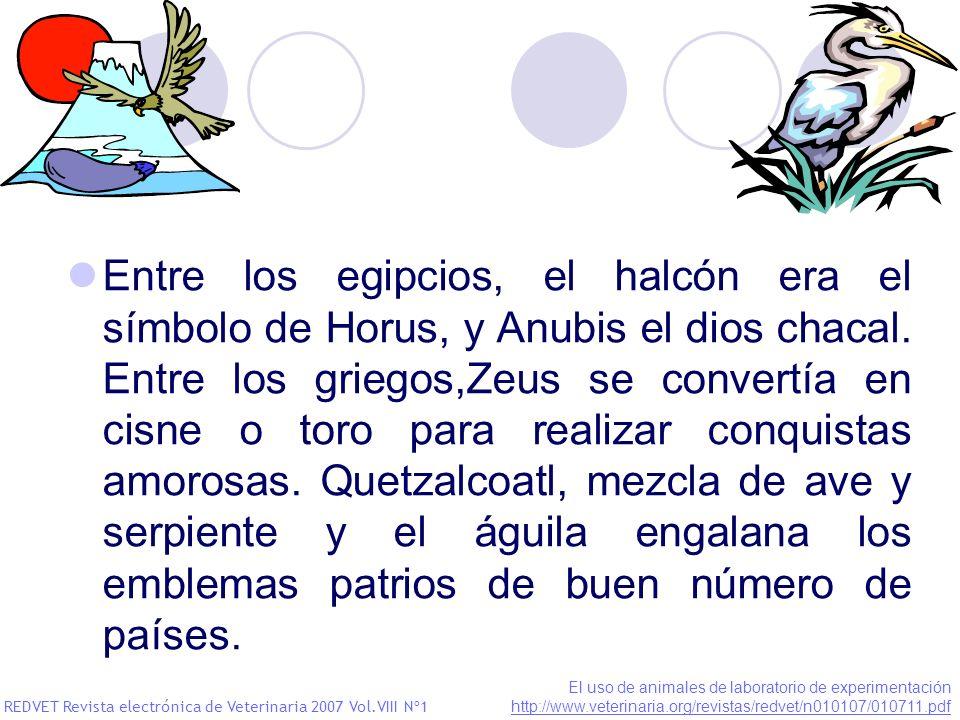 Entre los egipcios, el halcón era el símbolo de Horus, y Anubis el dios chacal. Entre los griegos,Zeus se convertía en cisne o toro para realizar conq