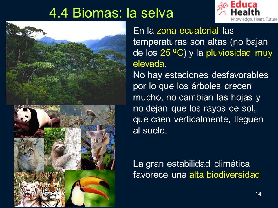 14 4.4 Biomas: la selva En la zona ecuatorial las temperaturas son altas (no bajan de los 25 0 C) y la pluviosidad muy elevada. No hay estaciones desf