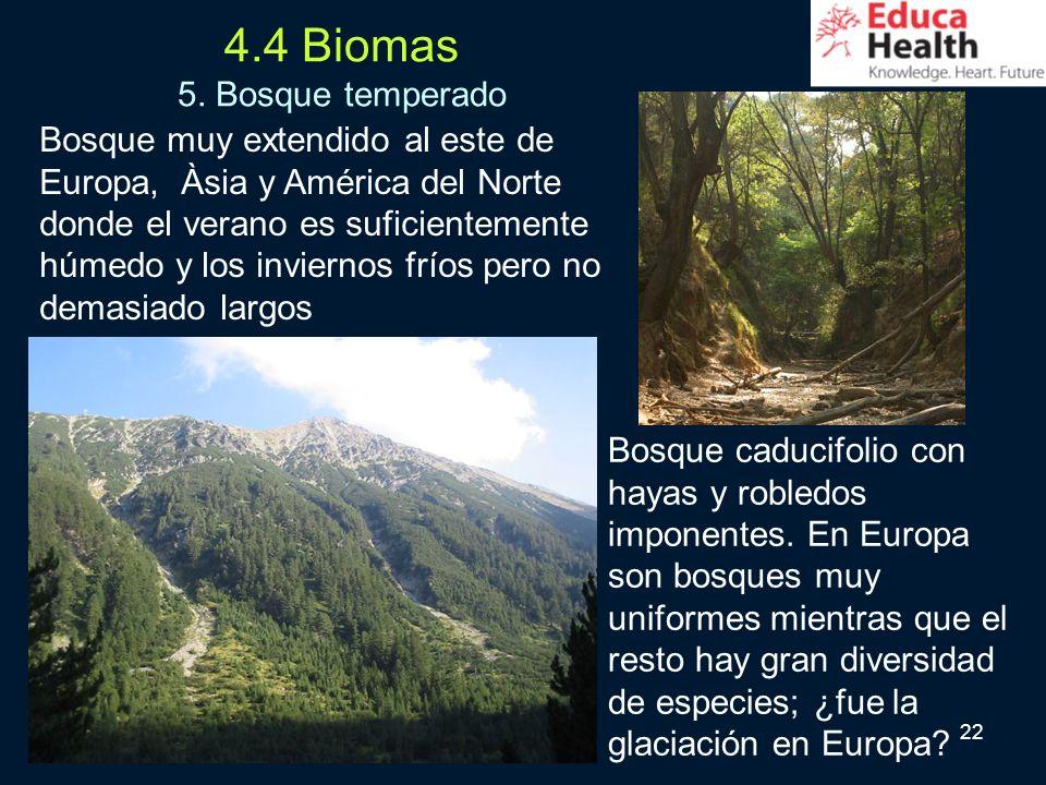 22 4.4 Biomas 5. Bosque temperado Bosque muy extendido al este de Europa, Àsia y América del Norte donde el verano es suficientemente húmedo y los inv