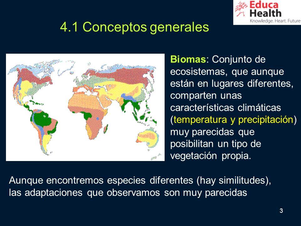 3 4.1 Conceptos generales Biomas: Conjunto de ecosistemas, que aunque están en lugares diferentes, comparten unas características climáticas (temperat