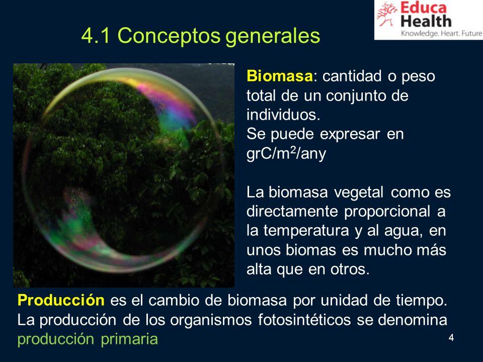 4 4.1 Conceptos generales Biomasa: cantidad o peso total de un conjunto de individuos. Se puede expresar en grC/m 2 /any La biomasa vegetal como es di