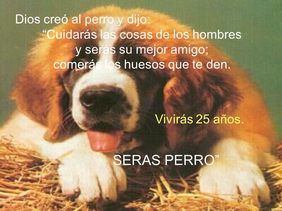 Dios creó al perro y dijo: Cuidarás las cosas de los hombres y serás su mejor amigo; comerás los huesos que te den.