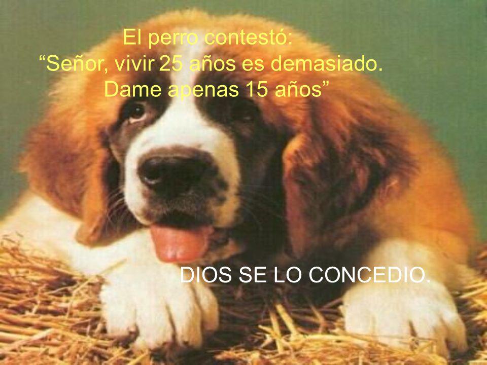 Dios creó al perro y dijo: Cuidarás las cosas de los hombres y serás su mejor amigo; comerás los huesos que te den. Vivirás 25 años. SERAS PERRO