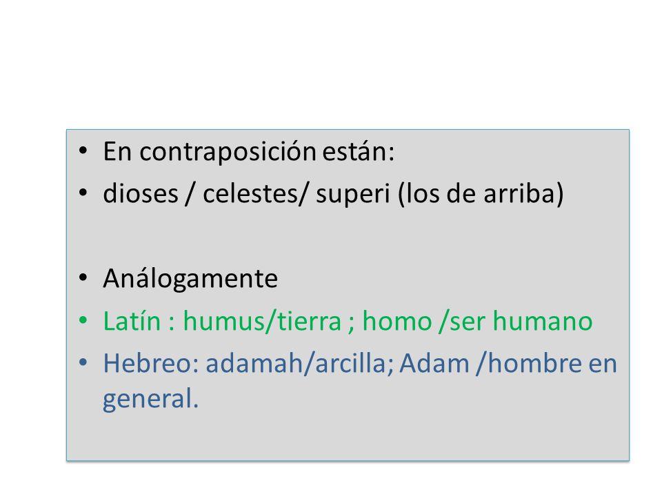 En contraposición están: dioses / celestes/ superi (los de arriba) Análogamente Latín : humus/tierra ; homo /ser humano Hebreo: adamah/arcilla; Adam /
