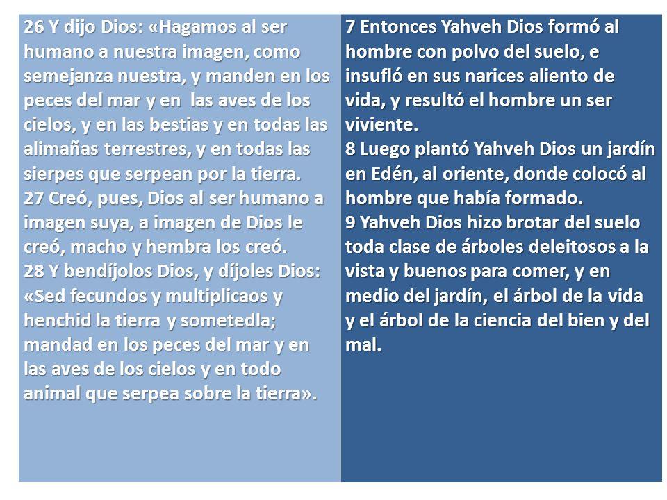 29 Dijo Dios: «Ved que os he dado toda hierba de semilla que existe sobre la haz de toda la tierra, así como todo árbol que lleva fruto de semilla; para vosotros será de alimento.