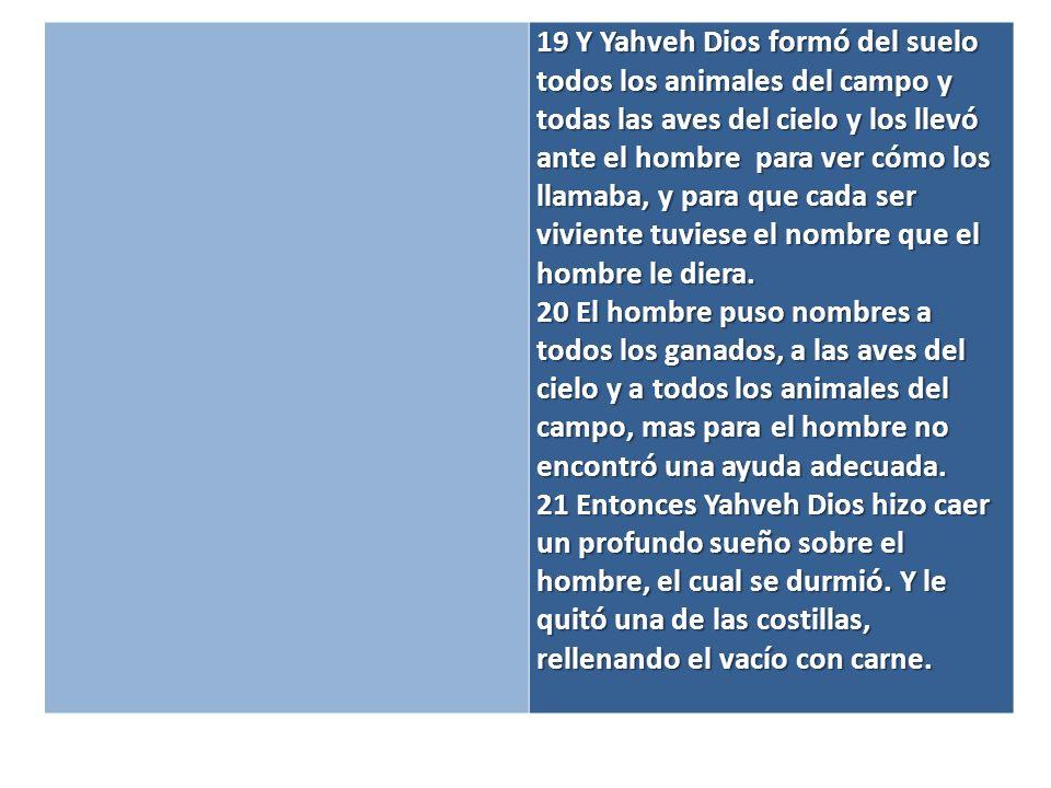 22 De la costilla que Yahveh Dios había tomado del hombre formó una mujer y la llevó ante el hombre.