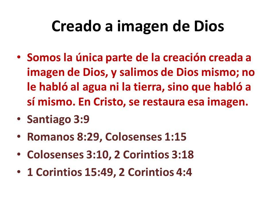 Responsabilidades encomendadas por Dios al hombre Lo representamos a Él en la tierra.