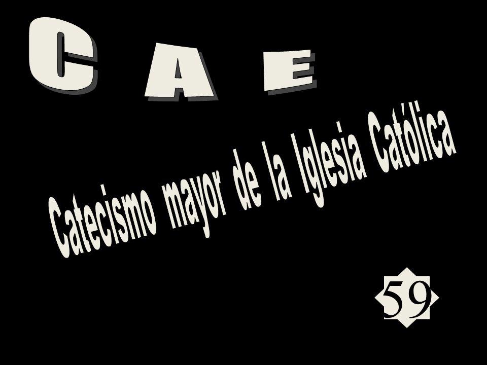 ESTUDIOS RECOMENDADOS POR BENEDICTO XVI Las SAGRADAS ESCRITURAS El CATECISMO de la IGLESIA CATÓLÍCA Las SAGRADAS ESCRITURAS El CATECISMO de la IGLESIA CATÓLÍCA