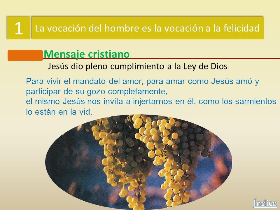 1 1 La vocación del hombre es la vocación a la felicidad Mensaje cristiano Jesús dio pleno cumplimiento a la Ley de Dios El maestro de la ley respondi