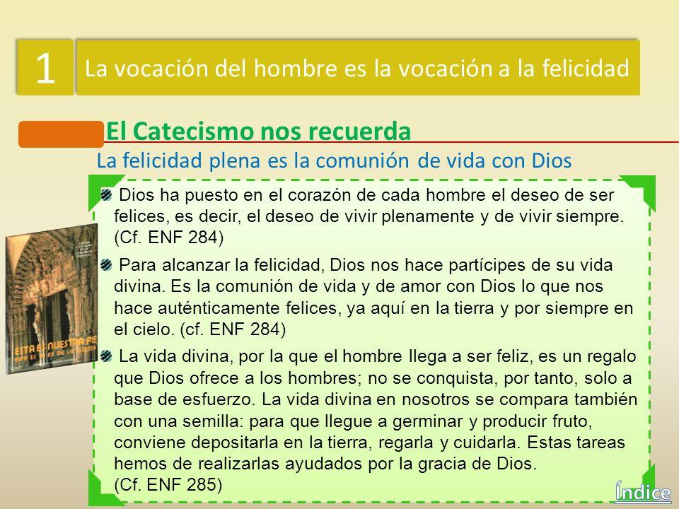 1 1 La vocación del hombre es la vocación a la felicidad Mensaje cristiano Jesús dio pleno cumplimiento a la Ley de Dios «Ningún sarmiento puede produ