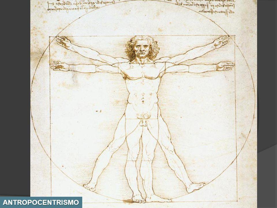 De acuerdo con las notas del propio Leonardo en el Hombre de Vitruvio se dan otras relaciones: La altura de un hombre son cuatro antebrazos (24 palmas).