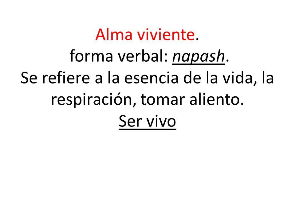 Alma viviente. forma verbal: napash. Se refiere a la esencia de la vida, la respiración, tomar aliento. Ser vivo