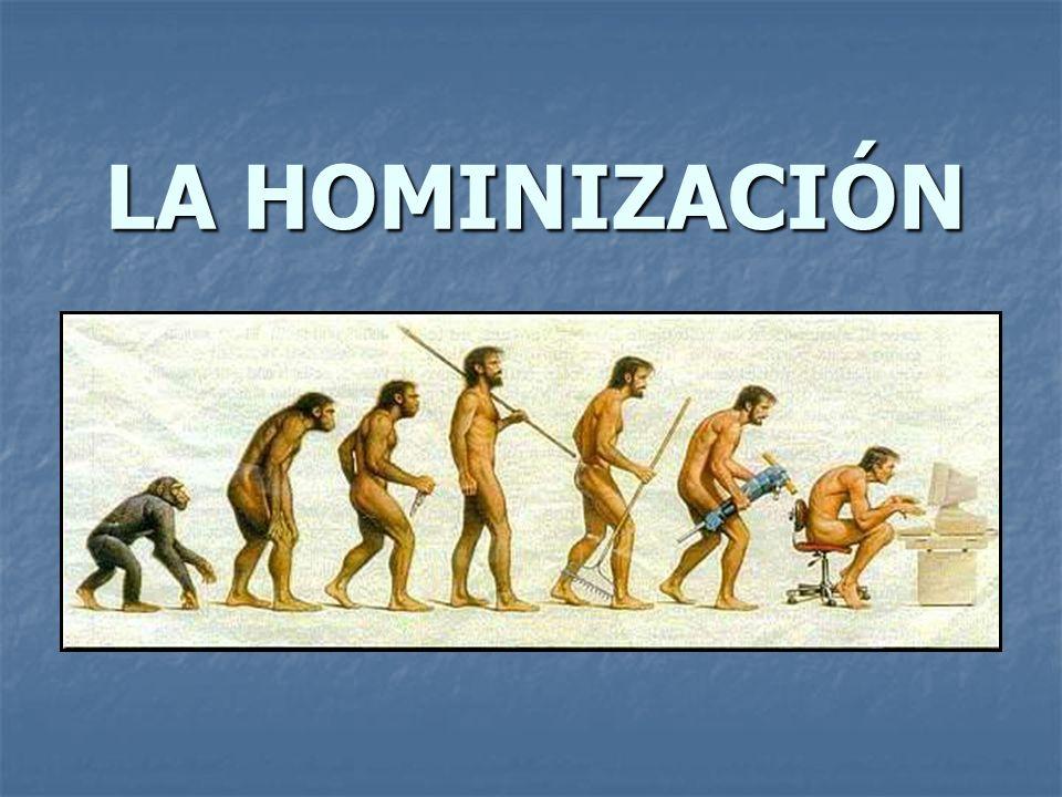 LA HOMINIZACIÓN